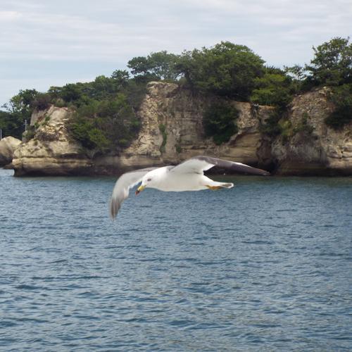 Nihon_yuho_Tohoku_Miyagi_Matsushima_cover