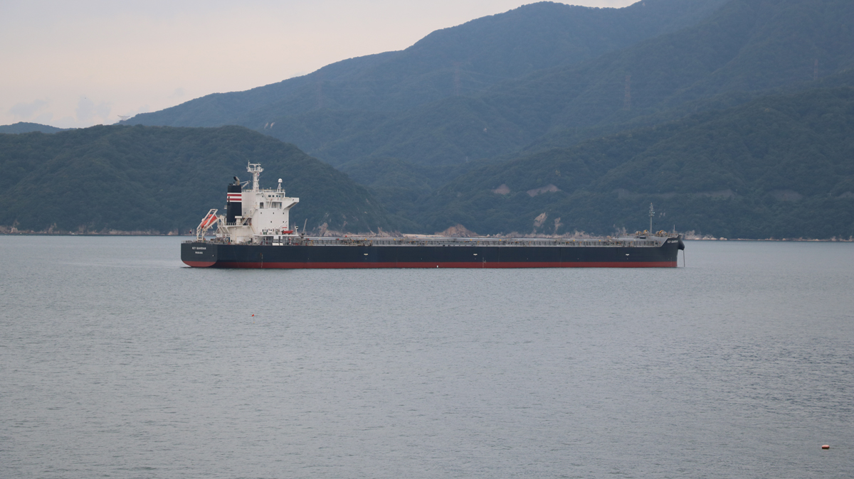 shippinmg_manual_ore_bulker_
