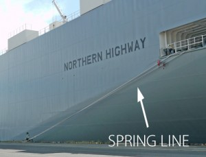 S_spring_line_with_caption