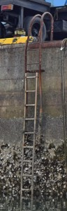 L_ladder